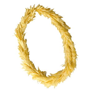 Flat Ginger Lei (Yellow)