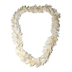Ginger Lei (Single)