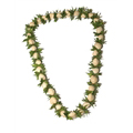 Kukui Nut with Ficus Lei (White)