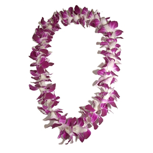 Orchid Lei (Single)